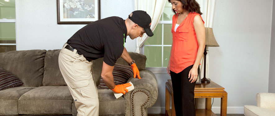 Caryville, TN carpet upholstery cleaning