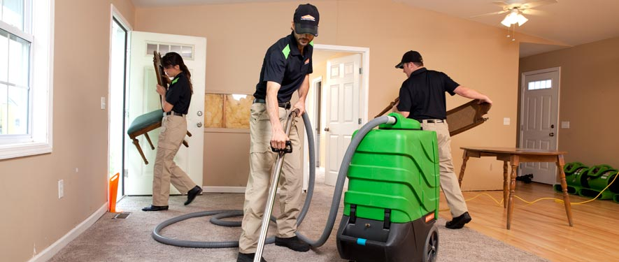 Caryville, TN cleaning services
